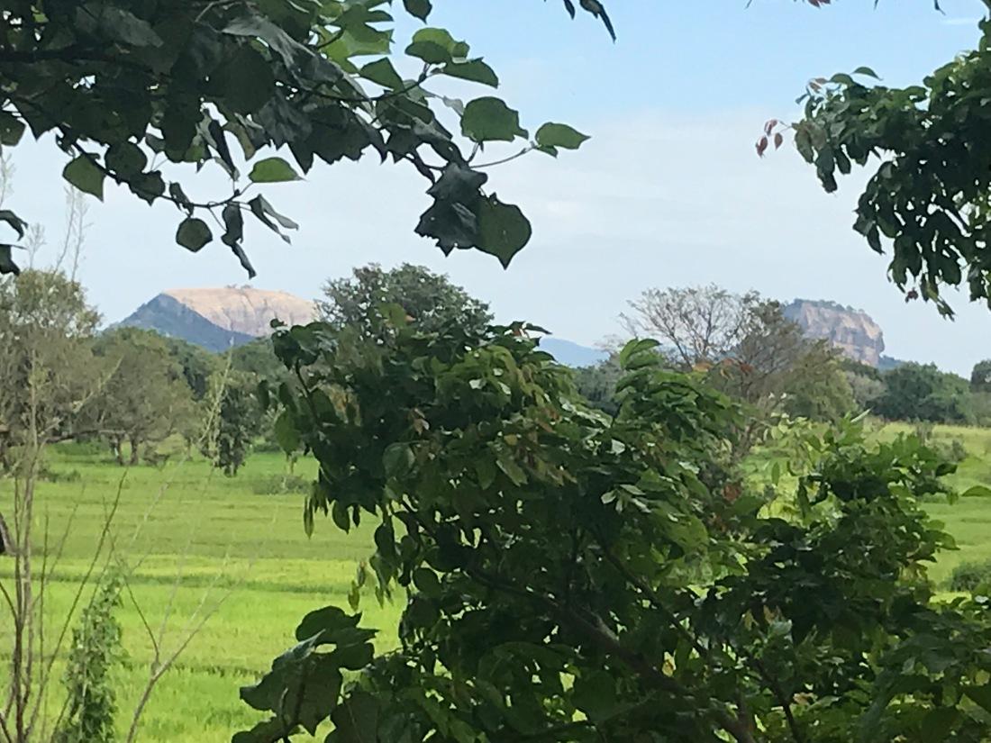 Sirigiya view