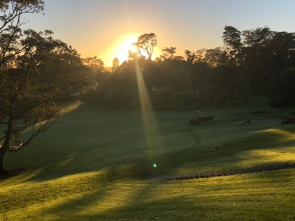 A quick change of location and here is th sunrise over Cornwall Park